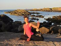 1-to-1 or Small group Private Yoga Classes - Introductory Price
