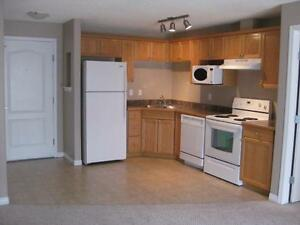 2 Bed, 2 Bath w/Elevator & insuite Laundry AVAILABLE DEC 18