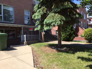 Big 3 1/2 Condo with  extra office room for Rent on Thierry St.