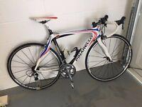 Pinarello Prince 50 HM Carbon Frame Bicycle