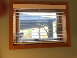 Blinds ready for you!