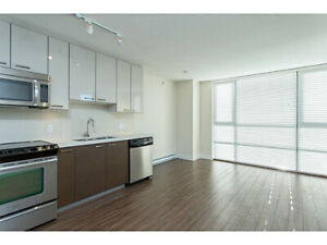 Beautiful 2 BED and 1 Bath Apartment with River Views!