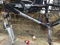 SPECIALIZED ADULTS BIKE FRAME WITH FORKS, REDUCED TO CLEAR