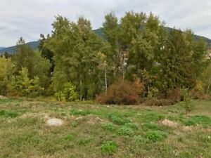 Beautiful Building Lot in the Heart of Creston