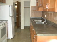 Two bedroom apartment for rent at 11940-104 Street