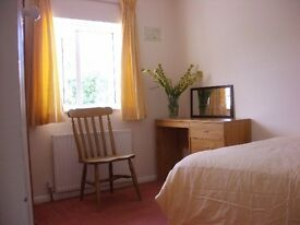 Small double room for single person, 2-bed semi in quiet road, close to university