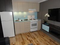 APARTMENT, NEW MODERN ,FULLY FURNISHED,A JEWEL!!!