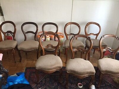 Wiener Barockstuhl ( 8 Stück )  Gründerzeit Stuhl Barock Stil Louis Philippe