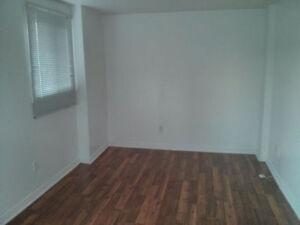 1 Bedroom WALKOUT Above Ground Basement apartment - Pickering
