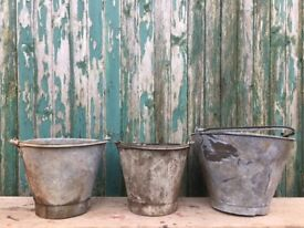 Salvaged agricultural buckets- ideal for garden planters
