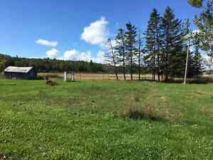 DIY special-home with Farm Land! Thessalon, ON