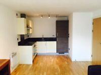 Excellent 1 bedroom modern city centre apartment with underground garage