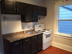 1 Bedroom Summer Sublet  (May-Aug)