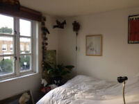 short term rental, one bedroom flat - March/April 2018 in leafy De Beavoir, Islington