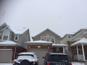 3 Bedroom Detached Home for Rent $1500 Cambridge Kitchener Area image 1