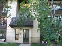 For Aug 1st - Condo 2 Bedroom River Height / Tuxedo Area