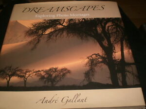 Andre Gallant Dreamscapes