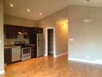 Like New 3 BR 1 Bath Beautiful Mainfloor Suite March 1st