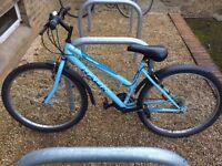 Amaretto Hawk 18-Speed Bicycle