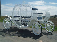 who doesnt wish for a cindrella carriage ?