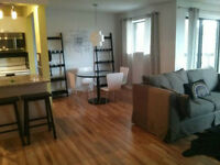 Downtown 2 Bedroom 2 Bathroom Close to University and Hospital