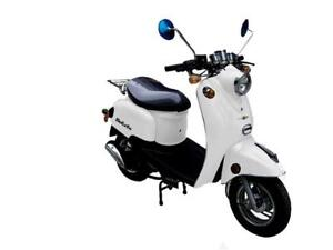 Scootterre Solista scooter rétro 50 $1999.99 achat direct