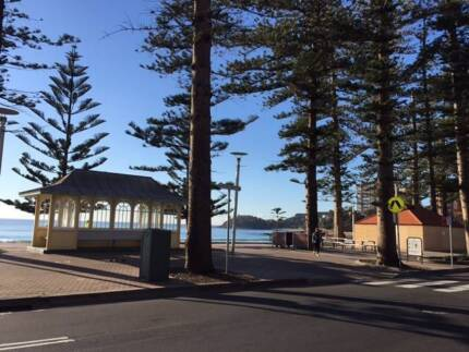 Bedroom for long term rent in the centre of Manly