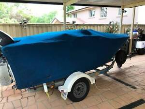 Custom made Bass / Bream boat Glenwood Blacktown Area Preview