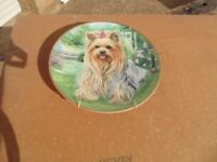 Danbury Mint Yorkshire Terrier Collectors Plate (Summer Time Beauty) in as New Condition.