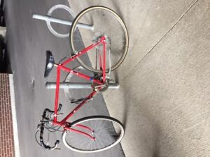 Vintage Le Circuir Road Bike