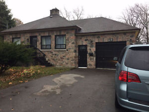 1 Bedroom Basement Apartment in Desirable Ajax Neighborhood