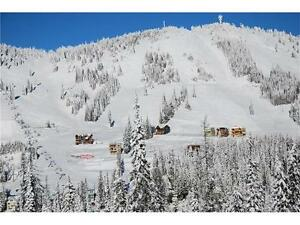 Premier building lot in Alpine Meadows