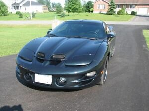 2002 Pontiac Trans Am Trans Am Coupe (2 door)