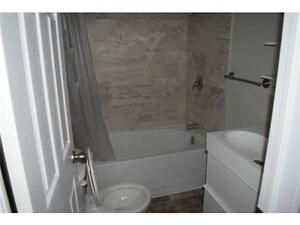 Newly renovated apartment in Simcoe for rent