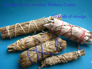 All Kinds of Smudge, Sage, Sweetgrass, Abalone Shells & Feathers