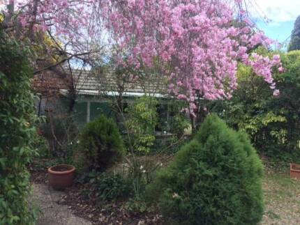 Private room, beautiful location, long, short term stay available Griffith South Canberra Preview