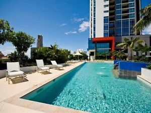 A very Modern & Clean Apartment to Share at Southport Central Southport Gold Coast City Preview