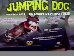 Halloween Jumping Dog Kitchener / Waterloo Kitchener Area image 1