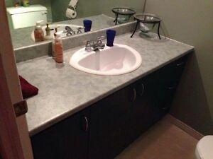 Vanité de salle de bain - eau URGENT