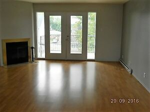 4 1/2 BELLE LUMINOSITÉ - INTERNET & CÂBLE INCLUS