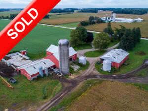 SOLD! Ongoing Dairy Including Quota, Herd & Feed in EMBRO