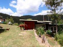Caretaker for Organic gardens and animals Tabulam Tenterfield Area Preview