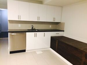 Completely remodeled spacious one-bedroom, Bathurst + College