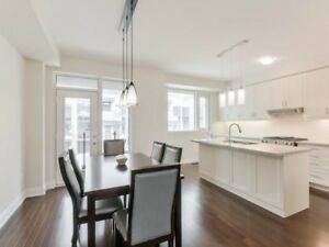 Brand New Modern 3-1 BR Luxury Townhouse w/ Rooftop in Toronto