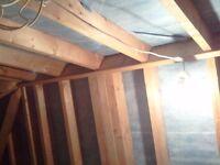 Professional Carpenter / Builder