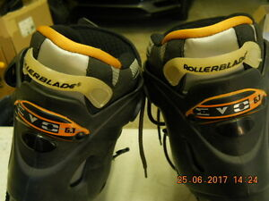 Size 10 High End Roller Blades [new price]