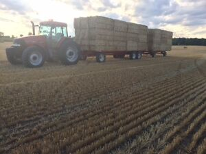 Premium quality Large Square bales of  Hay and Straw for sale.