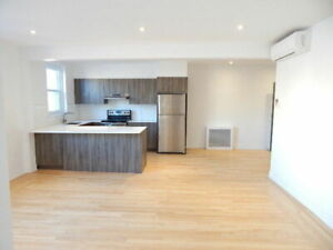 RENOVATED SPACIOUS 2-BEDROOM CONDO IN DOWNTOWN - SUPERBE 4.5