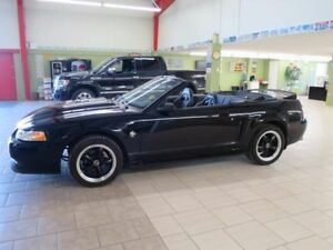 1999 Ford Mustang GT Convertible Manual 100km!!!!!!!