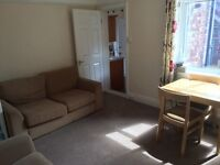 Ground floor 2 bedroom flat with courtyard garden close to Newcastle centre available now